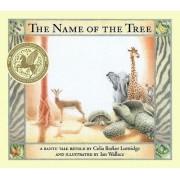 The Name of the Tree by Celia Barker Lottridge