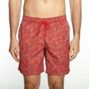 Mr.Swim The Dale Paisley Shorts Swimwear Red