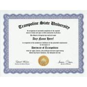 Trampoline Trampolines Degree: Custom Gag Diploma Doctorate Certificate (Funny Customized Joke Gift Novelty Item)