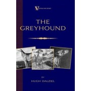 The Greyhound; Its History, Points, Breeding, Rearing, Training and Running (A Vintage Dog Books Breed Classic) by Hugh Dalziel