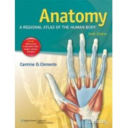 Anatomy by Carmine D. Clemente