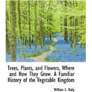 Trees, Plants, and Flowers, Where and How They Grow. a Familiar History of the Vegetable Kingdom by William L Baily
