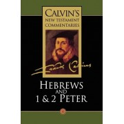 Calvin's New Testament Commentaries: The Epistle of Paul the Apostle to the Hebrews and the First and Second Epistles of St. Peter Vol 12 by John Calvin