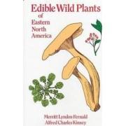 Edible Wild Plants of Eastern North America by Merritt Lyndon Fernald