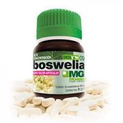 Boswellia - 30 caps