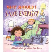 Why Should I Save Energy? by Jen Green
