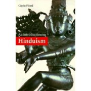 An Introduction to Hinduism by Gavin D. Flood