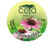 Crema Tip Unguent cu Extract Total de Echinaceea