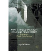 What Is to Be Done about Crime and Punishment?: Towards a 'Public Criminology'