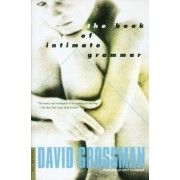 The Book of Intimate Grammar by David Grossman