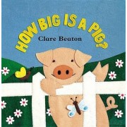 How Big is a Pig by Stella Blackstone
