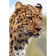 The Face of a Leopard, for the Love of Animals: Blank 150 Page Lined Journal for Your Thoughts, Ideas, and Inspiration