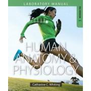 Human Anatomy & Physiology Laboratory Manual by Catharine C. Whiting