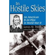 In Hostile Skies by James M. Davis