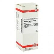 DHU-Arzneimittel GmbH & Co. KG THALLIUM SULFURICUM D 6 Dilution 50 ml