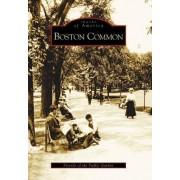 Boston Common by Friends of the Public Garden