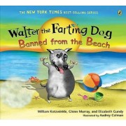 Banned from the Beach by William Kotzwinkle