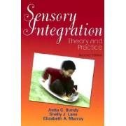 Sensory Integration by Bundy