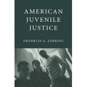 American Juvenile Justice by Franklin E. Zimring