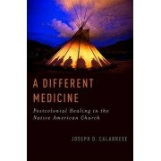 A Different Medicine by Lecturer in Medical Anthropology Joseph D Calabrese