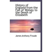 History of England from the Fall of Wolsey to the Death of Elizabeth by James Anthony Froude
