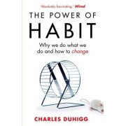 Charles Duhigg The Power of Habit: Why We Do What We Do, and How to Change