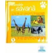 Animalele din savana