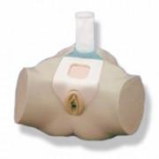 simulatore per cateterizzazione, transuretrale e sovrapubica - donna