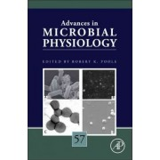 Advances in Microbial Physiology: Volume 60 by Robert K. Poole