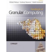 Handbook of Granular Computing by Witold Pedrycz