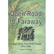 Open Road to Faraway by Andrew Sneddon Winton
