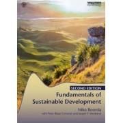 Fundamentals of Sustainable Development by Niko Roorda