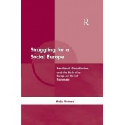 Struggling for a Social Europe by Mr. Andrew Mathers