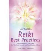 Reiki Best Practices by Walter L