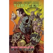 Teenage Mutant Ninja Turtles: Secret History of the Foot Clan by Mateus Santolouco