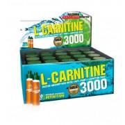 Gold Nutrition L-Carnitina 3000 Mg