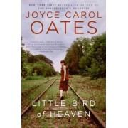 Little Bird of Heaven by Professor of Humanities Joyce Carol Oates