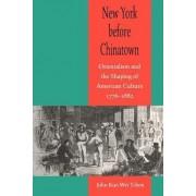 New York Before Chinatown by John Kuo Wei Tchen