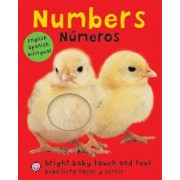 Numbers/Numeros by Roger Priddy