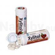 Miradent Xylitol žvýkačky, brusinka, 30ks