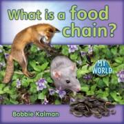 What Is a Food Chain? by Bobbie Kalman