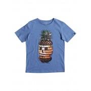 Quiksilver Футболка Classic Hot Pineapple