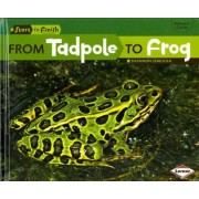 From Tadpole to Frog by Shannon Zemlicka