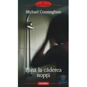 Pana la caderea noptii - Michael Cunningham