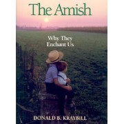 The Amish by Professor Donald B Kraybill