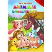 Animale Domestice Pui - Carte De Colorat