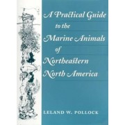 A Practical Guide to the Marine Animals of Northeastern North America by Leland W. Pollock