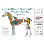 Maggie Raynor Horse Anatomy Workbook (Allen Student)