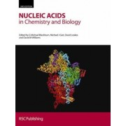 Nucleic Acids in Chemistry and Biology by G.Michael Blackburn
