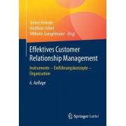Effektives Customer Relationship Management: Instrumente - Einfuhrungskonzepte - Organisation